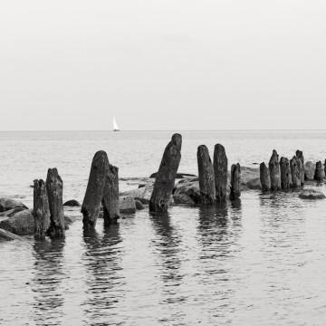 Neue Heimat – Tour am Meer